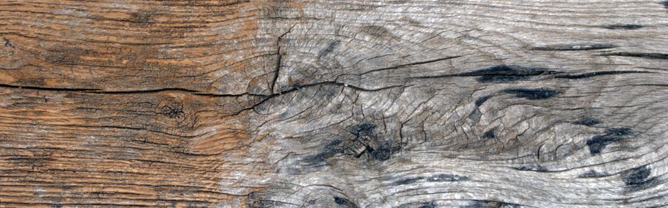 Casas y estructuras de madera cryologica team s l - Limpieza en seco en casa ...